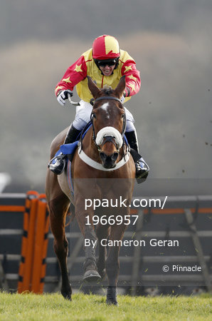 Exeter Races, Exeter, UK - 23 Feb 2018
