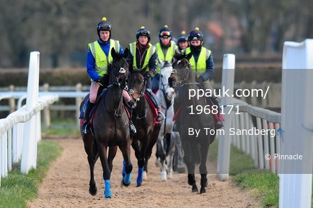 Paul Nicholls Stables Day, Ditcheat, UK - 26 Feb 2018