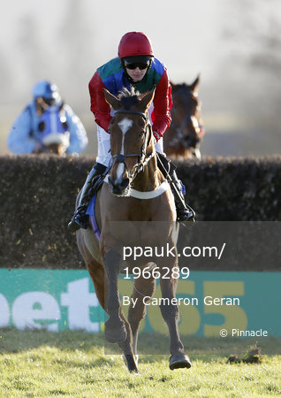 Taunton Races, Taunton, UK - 20 Feb 2018