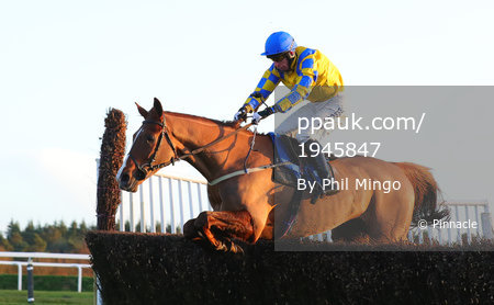 Exeter Races, Exeter, UK - 1 Jan 2018