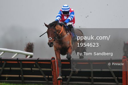 Taunton Races, Taunton, UK - 9 Jan 2018