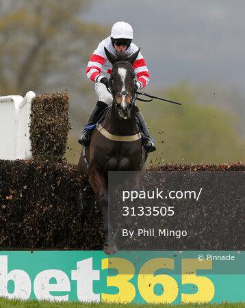 Taunton Races, Taunton, UK - 04 Apr 2019