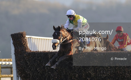 Taunton Races, Taunton, UK - 4 Feb 2019