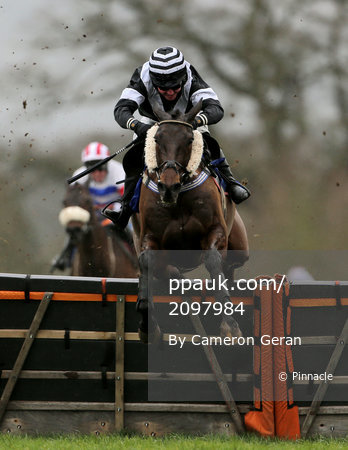 Taunton Races, Taunton, UK - 11 Mar 2019