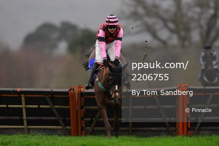 Taunton Races, Taunton, UK - 2 Feb 2020