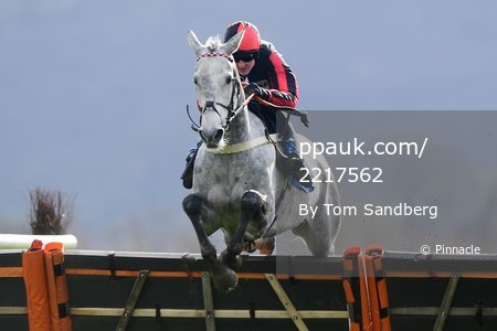 Taunton Races, Taunton, UK - 17 Mar 2020