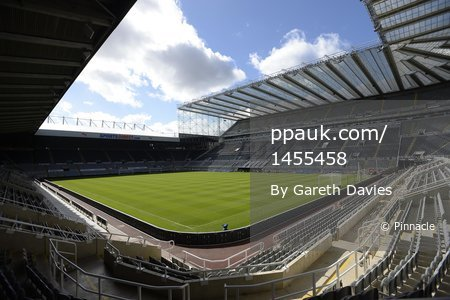 Newcastle United Fulham 310813