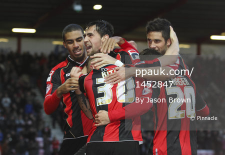 Bournemouth v Yeovil 261213