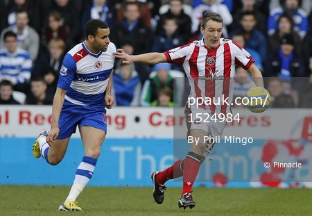 Reading v Sheffield United 260113