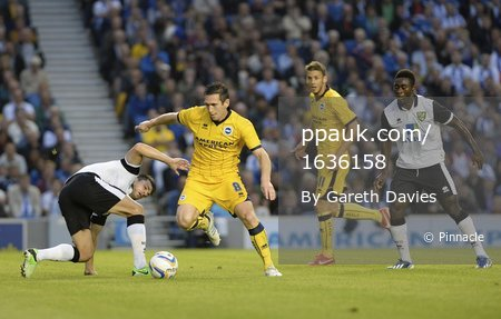 Brighton v Norwich City 300713