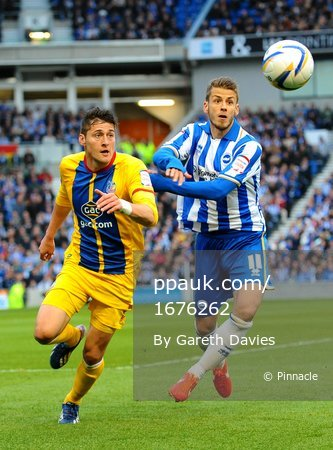 Brighton v Crystal Palace 130513