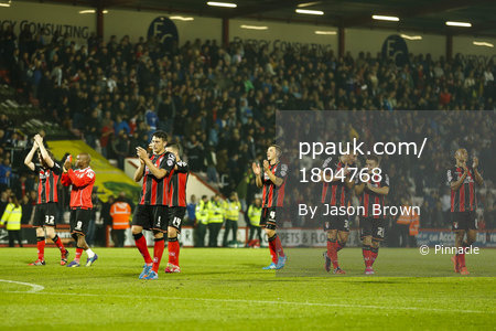 Bournemouth v West Bromwich Albion 281014