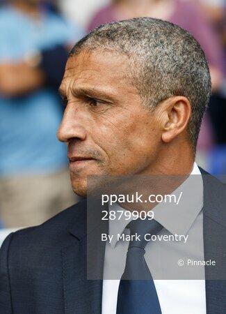 Ipswich Town v Brighton and Hove Albion 290815