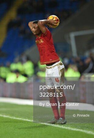 Cardiff City v Nottingham Forest 291215