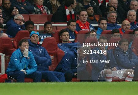 Arsenal v AS Monaco 250215