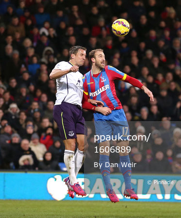 Crystal Palace v Everton 310115