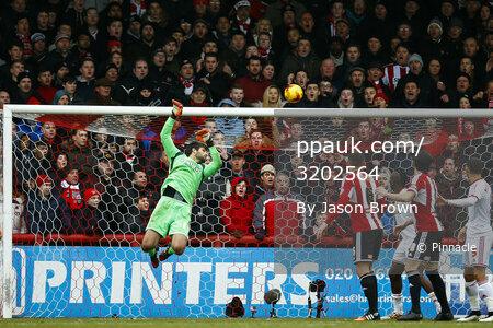Brentford v Middlesbrough 310115