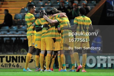 Yeovil Town v Bristol City 300715