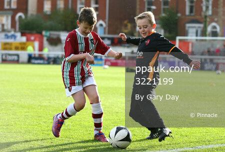 Exeter City v Bristol Rovers 281115