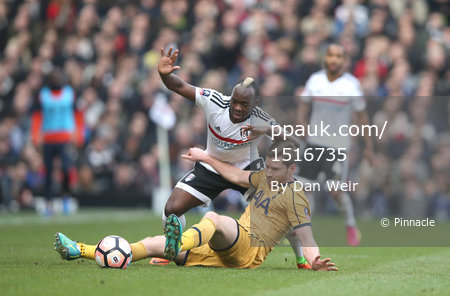 Fulham v Tottenham Hotspur, London - UK - 19 Feb 2017