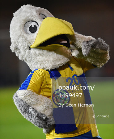 Torquay United v Eastleigh - UK - 21 Mar 2017