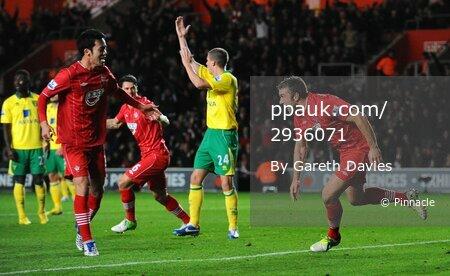 Southampton v Norwich City 281112