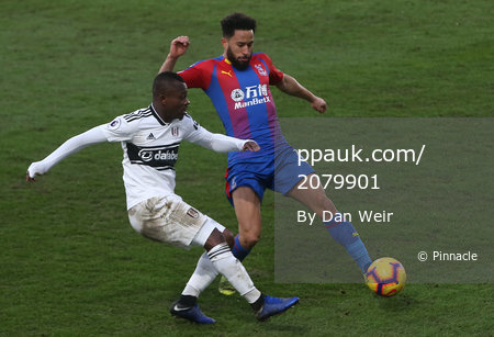 Crystal Palace v Fulham, Croydon - 2 February 2019