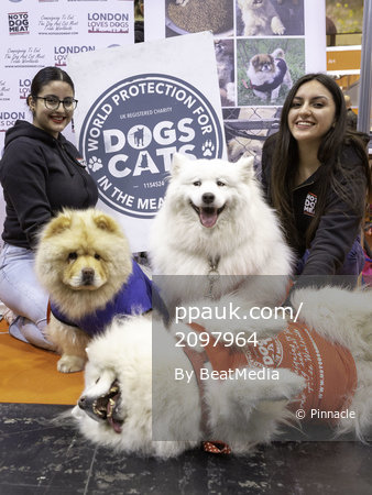 Crufts 2019 - Day Four, NEC, UK - 10 Mar 2019