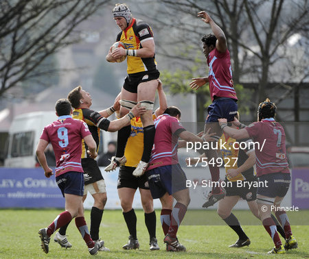Rotherham Titans v Cornish Pirates 310312