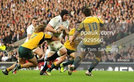 England v Australia 291114