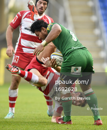 London Irish v Gloucester 301114