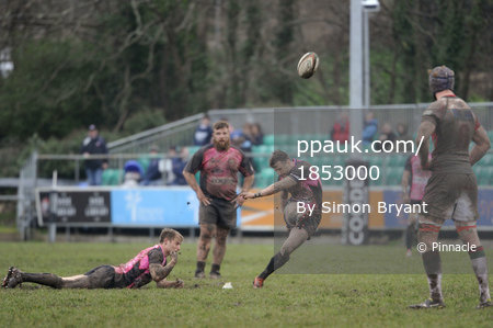 Cornish Pirates v Plymouth Albion 290315