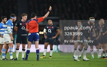 England v Argentina 261116