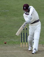 Somerset v Middlesex 260313