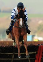 Newton Abbot Races 230410