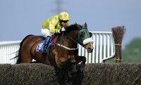 Newton Abbot Races 050511