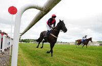 Newton Abbot Races 160511