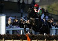 Newton Abbot Races 200311