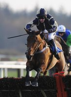 Exeter Races 201111