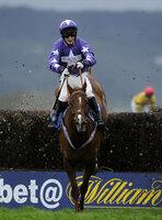 Taunton Races 081211