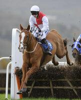 Taunton Races 241111