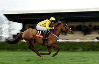 Wincanton Races 070112