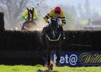 Taunton Races 280312