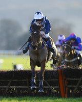 Taunton Races 291112
