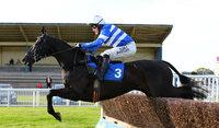 Newton Abbot Races 250414