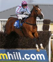 Newton Abbot Races 300814