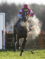 Exeter Races 090214