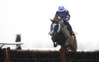 Taunton Races 270214