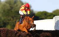 Newton Abbot Races 240614