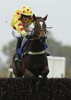 Wincanton Races 161014